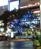 041119-shinjuku.jpg
